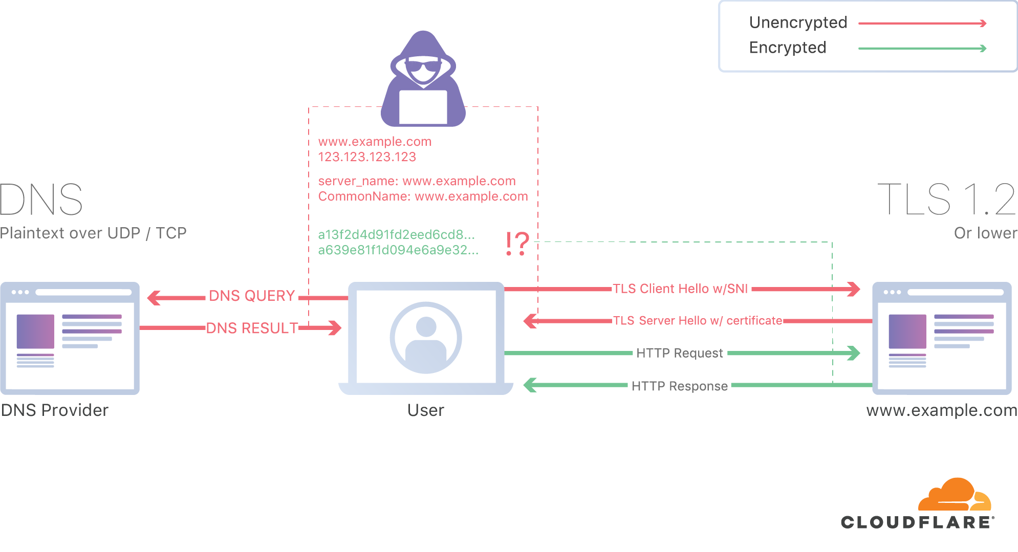 A DNS infographic